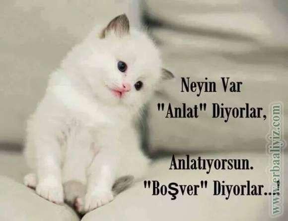 Neyin_Var_Anlat.jpg
